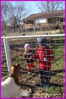 Peanut Gets Down on the Farm