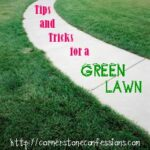 Tips and Tricks for a Green Lawn, Part 4
