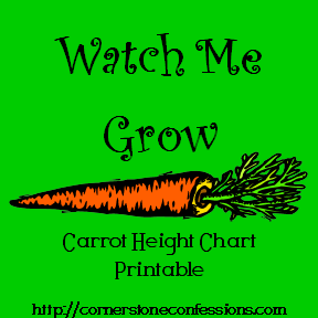 Carrot Height Chart