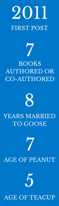 Cornerstone Confessions Stats