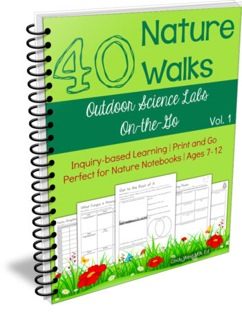 40 Nature Walk Printables for On-the-Go Nature Study
